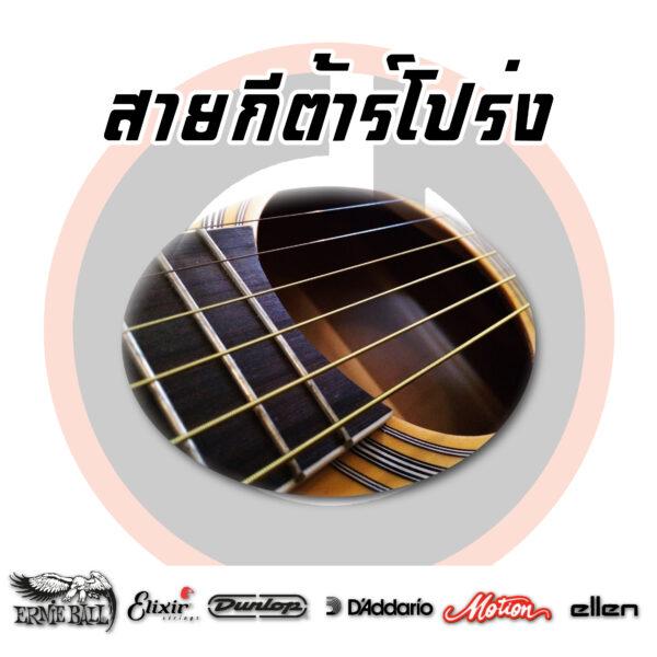 สายกีต้าร์โปร่ง/Acoustic Guitar Strings